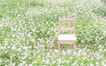 野原にある誰も座っていない椅子