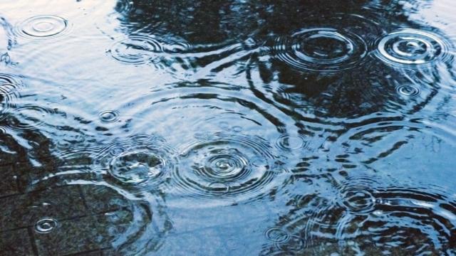 雨降りの水たまり